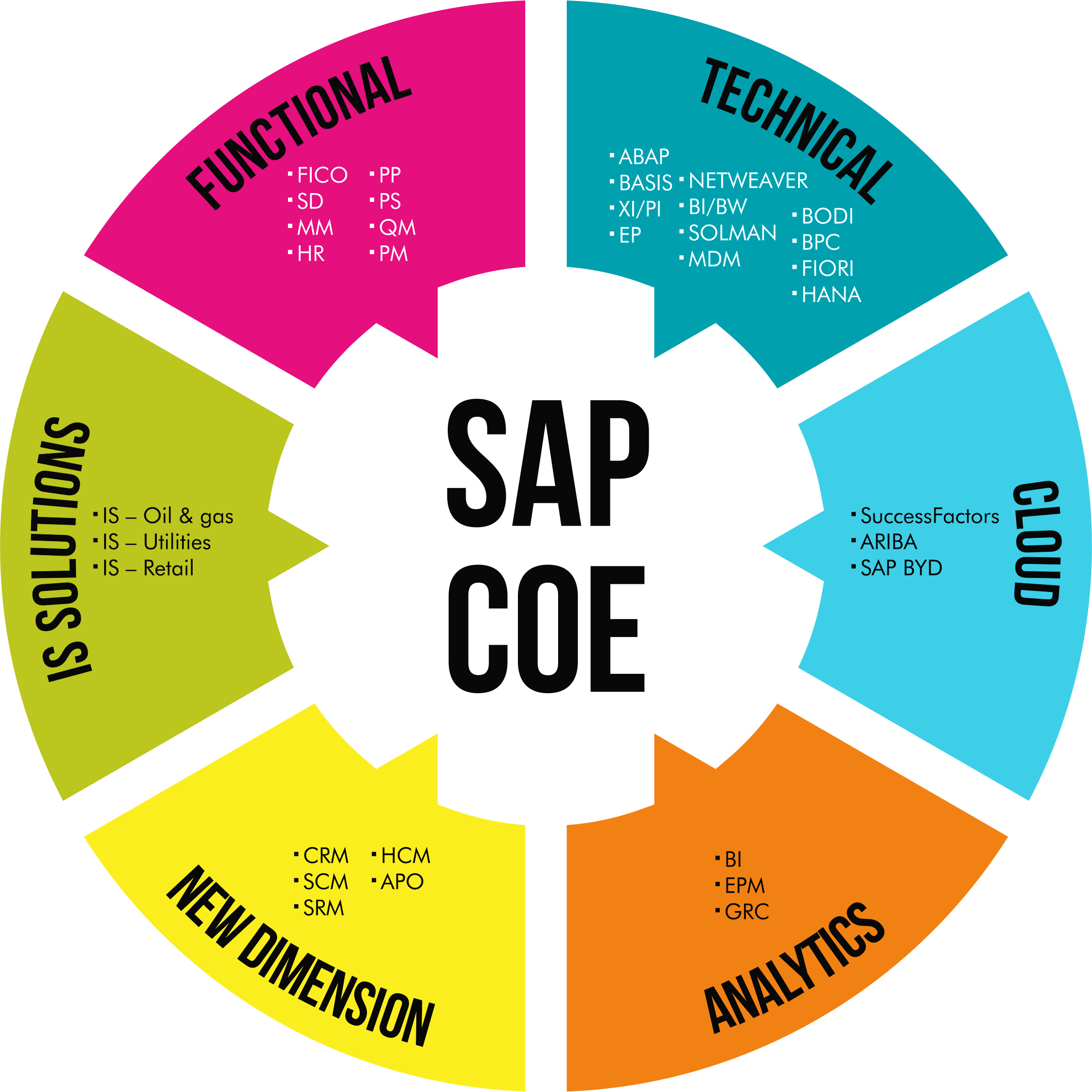 Sap Consulting And Enterprise Application