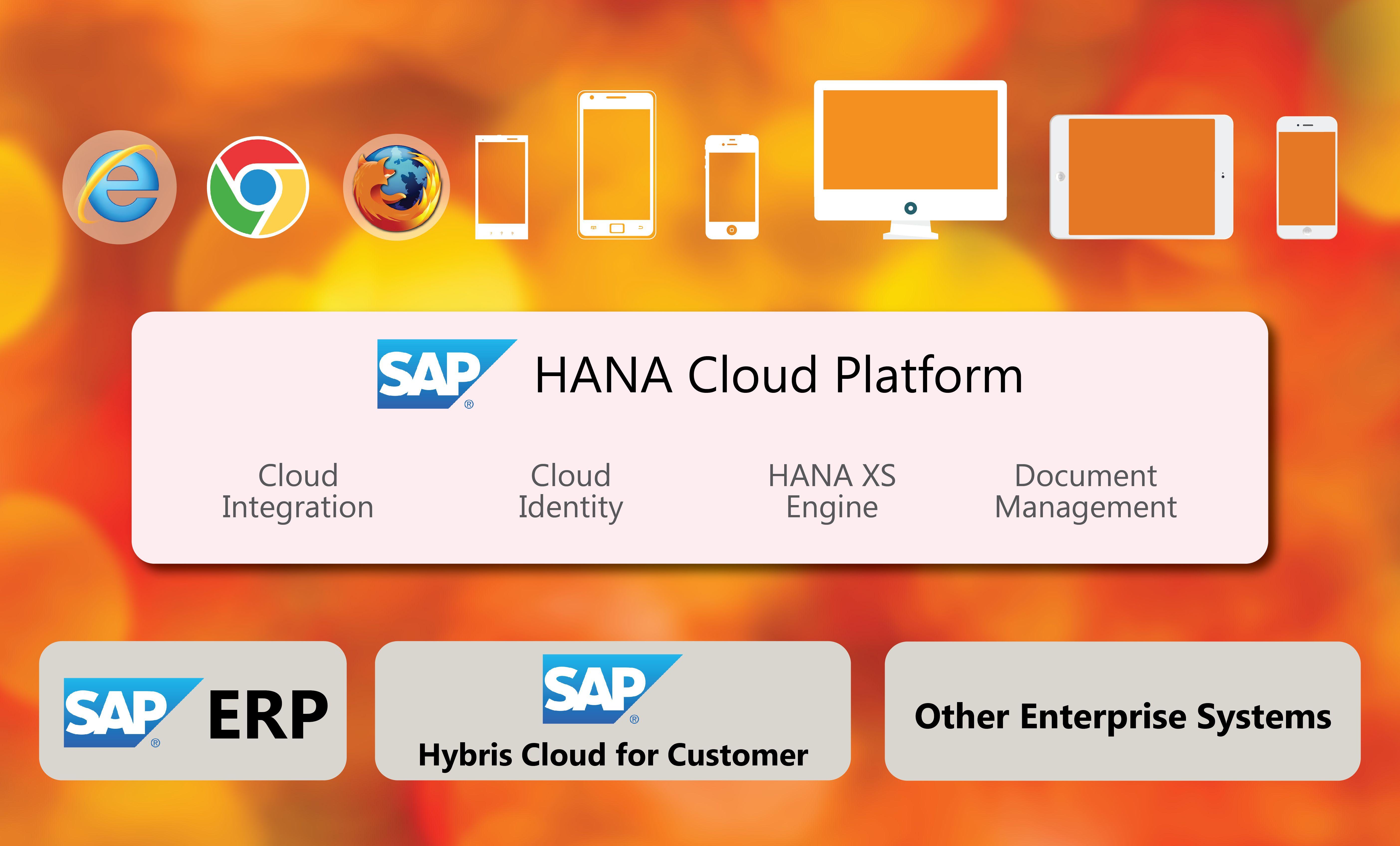 Gapbridge Software Services Hcp